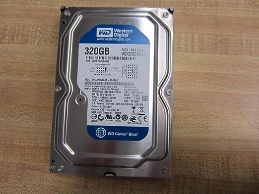 Western Digital Disco duro 320 GB WD3200AAJB 3,5 pulgadas 320 GB PATA 7200 rpm 8 MB: Amazon.es: Electrónica