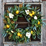Darby Creek Trading Fresh Citrus Real Touch Magnolia & Lemons, Eucalyptus Everyday Spring Wreath