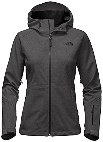 92aa46ff2 The North Face Women's Apex Flex Gore-Tex Jacket at Amazon Women's ...