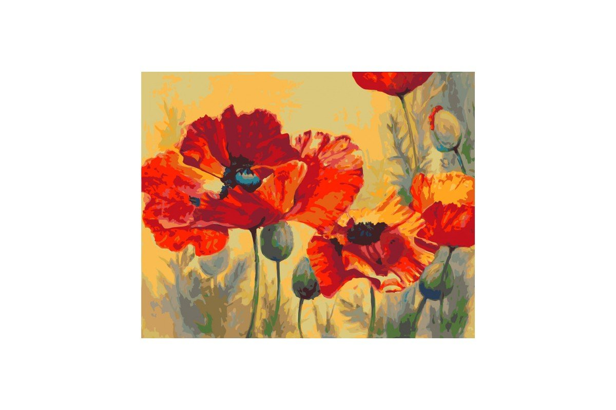 PAINT BY NUMBERS KIT FIELD POPPIES T40500010