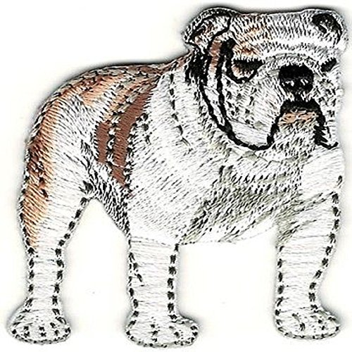 """1 3/4""""x 2"""" Realistic White Brown Bulldog Bull Dog Breed Embroidery Patch"""