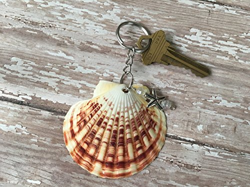 Seashell Keychain Favors - Real Tropical Seashell Key Chain with Starfish Bead