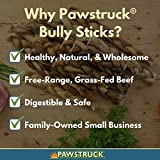 """Pawstruck 12"""" Braided Bully Sticks for Dogs"""