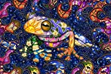 """Peace Frog Tapestry by Dan Morris, 40""""x60"""""""