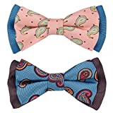 Blueberry Pet Spring Gift Box with Pack of 2 Handmade Dog Cat Bow Tie, Paisley Fave Designer Bowtie Set, 4'' 2.5''