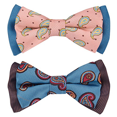 Blueberry Pet Spring Gift Box with Pack of 2 Handmade Dog Cat Bow Tie, Paisley Fave Designer Bowtie Set, 4 2.5