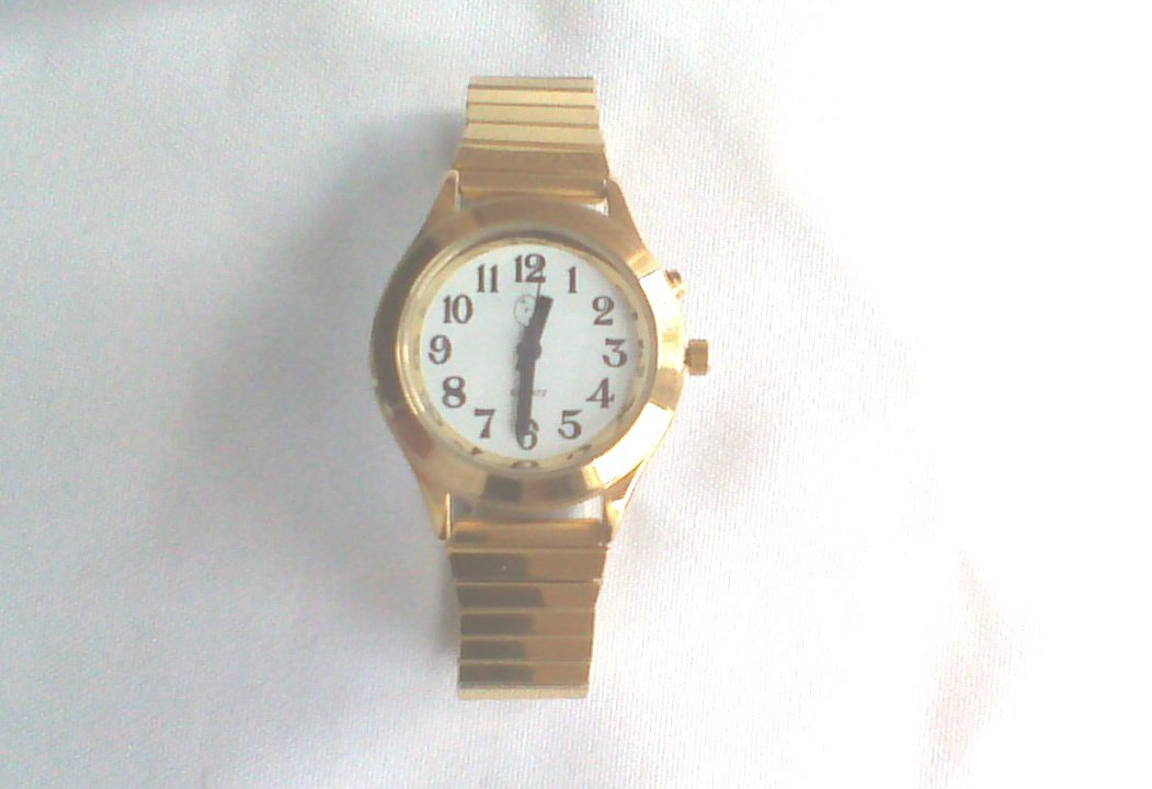 Ladies Deluxe Talking Wrist Watch Gold Tone for Low Vision or Blind by Active Products Plus