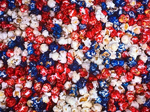 Patriotic Red White Blue Gourmet Popcorn Pick Your Size (16 -