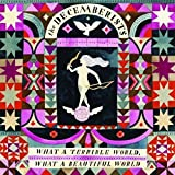 What a Terrible World What a Beautiful by Decemberists