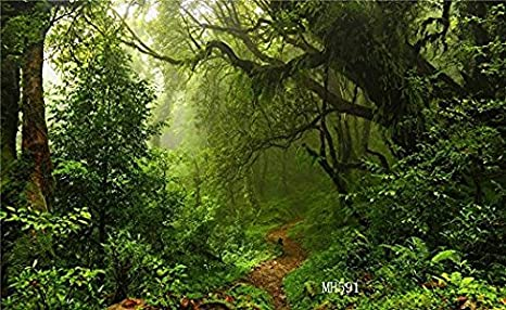 8x12 FT Rainforest Vinyl Photography Backdrop,Waterfall in The Middle of Tropical Jungle Natural Scenery Countryside Style Background for Baby Birthday Party Wedding Graduation Home Decoration