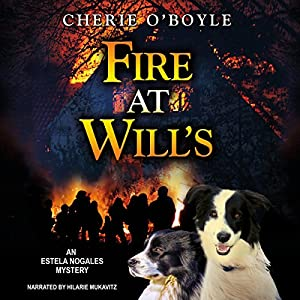 Fire at Will's Audiobook