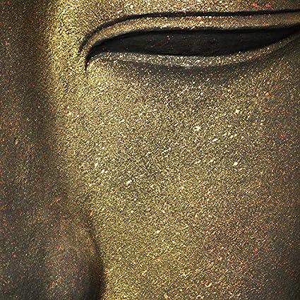 Bouddha Panneau de Douche d/écoratif Zen 120x240cm Rev/êtement mural salle de Bain ID panneaux