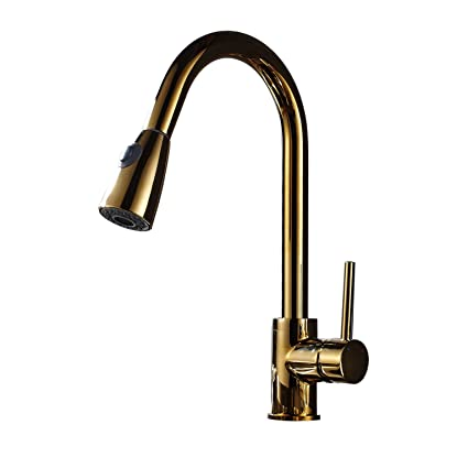 Rozin Gold Polished Pull Out Sprayer Kitchen Faucet Swivel Spout