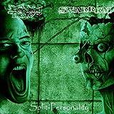 Embalming Theatre   Swarrrm by Split (2009-01-25)