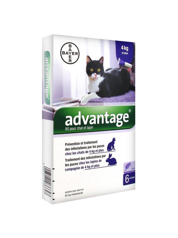 Bayer Advantage 80 Solution Antipuce Pour Chat et Lapin de 4kg et Plus 6 Pipettes 7435_9297