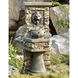 Jeco Lion Head Outdoor Indoor Water Fountain