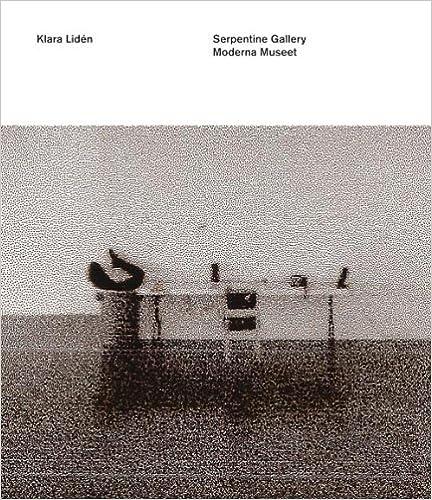 Book Klara Lidn: Morderna Museet.