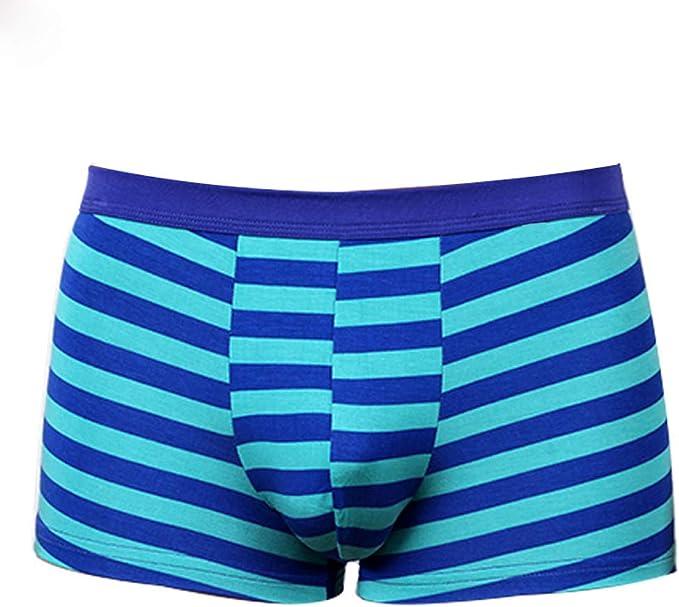 ZEZKT Calzoncillos Boxer Estampados para Hombre Ropa Interior de algodón Transpirable Sexy Casual Moda Cómodo Suave Calzoncillos Estilo Nuevo: Amazon.es: Ropa y accesorios