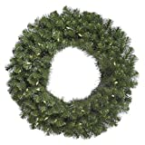 Vickerman 60'' Douglas Fir Wreath with 200 Warm White LED Lights