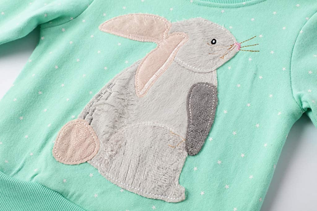 Rikay Kids Boys Girls Rabbit Sweatshirt Jumper T-Shirt Cute Long Sleeve Tops Casual Pullover Toddler Clothes 2-8 Years