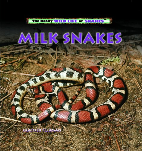 Milk Snakes (The Really Wild Life of Snakes)