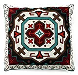 Carstens Southwest Embroidered pillow #1