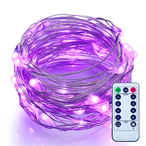 ITART Dimmable LED String Lights with Remote Purple Mini Fairy Lights Battery Operated 50 LEDs / 16.7ft (5m) Super Bright Ultra Thin Silver Wire Rope Lights for Trees Wedding Bedroom
