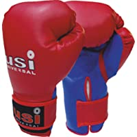 Bouncer Boxing Glove