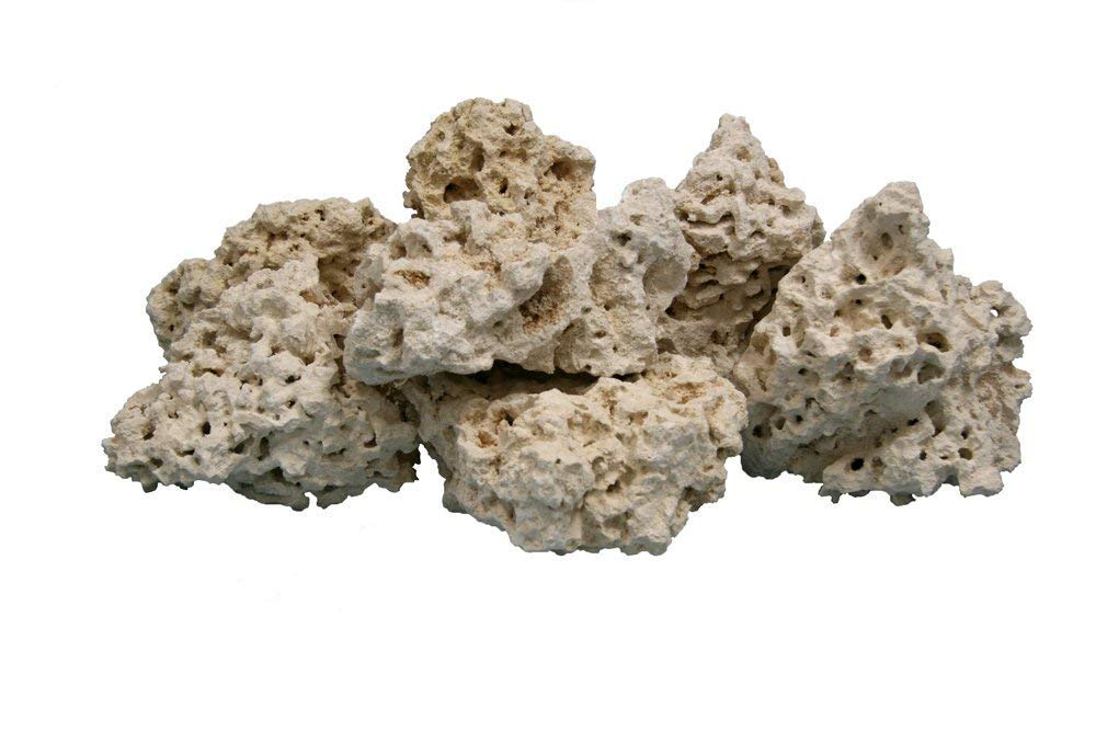 Nature's Ocean Coral Base Rock 4-8 INCHES, 20 LBS by Nature's Ocean