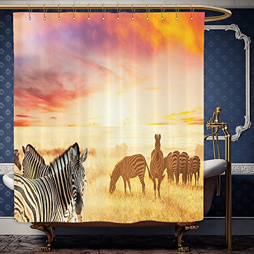 Wanranhome Custom-made shower curtain Safari Decor African Zebras at Fairy Sunset on the Grassland Wildlife Adventure Theme in the Nature Golden Red For Bathroom Decoration 69 x 72 - At Map Galleria Sunset