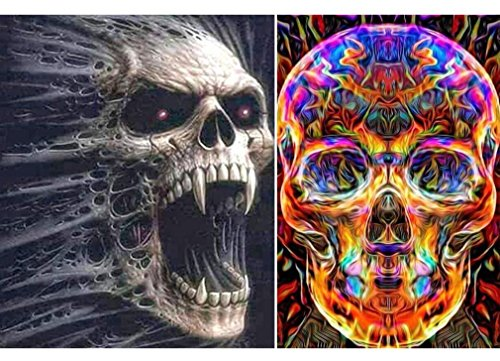 2 Sets 5D Full Drill Diamond Painting Kits for Adults Colored Skull Head