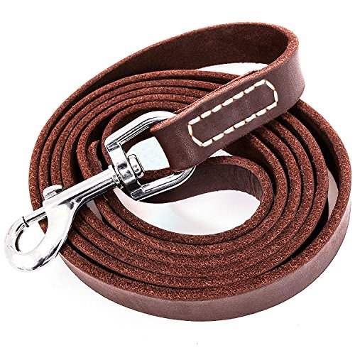 Fairwin Leather Dog Leash 5 Foot, Dog Training Leash Heavy Duty for Large Medium Small Dogs (5/8', Brown)