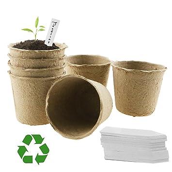LFS Macetas biodegradables de Fibra sin turba para Semillas, Redondas, 6 cm, 100 Unidades, sin Etiquetas: Amazon.es: Jardín
