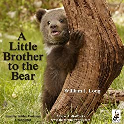 A Little Brother to the Bear