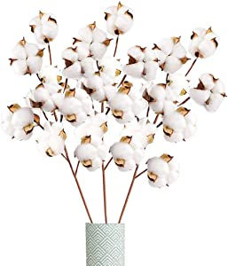 Xilanhhaa 3 PCS Cotton Stems,Artificial Cotton Branches Farmhouse Decor Floral Display Filler Flower Bouquet for Wreath Decor,Home Decoration,DIY Home Party Decor