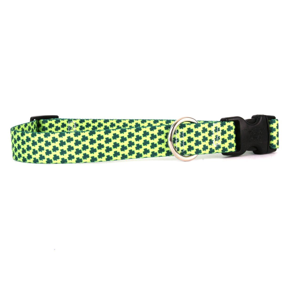 Yellow Dog Design 4 Leaf Clover Dog Collar Fits Neck 14 to 20//4 Wide Medium 3//4 Wide