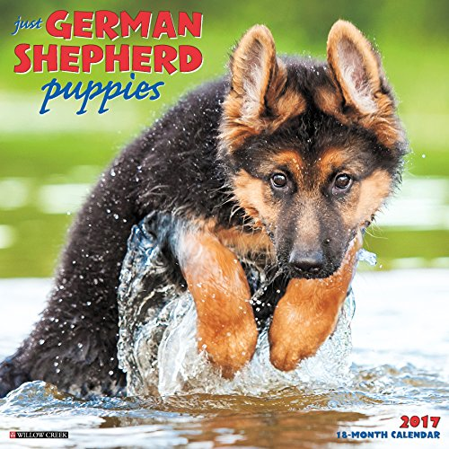 Just German Shepherd Puppies 2017 Wall Calendar (Dog Breed Calendars) (Shepherd Calendar)