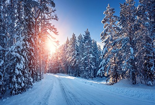 Baocicco 7x5ft Winter Backdrop Snow Backdrop Snow Freezing Pine Trees Road Rutting Sunlight Backdrop Photography Background Children Holiday Snow Scene Outdoor Landscape Christmas New Year Festival