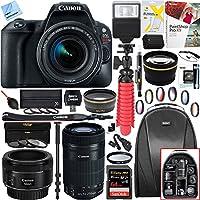 Canon EOS Rebel SL2 24MP SLR Digital Camera 2249C002 + EF-S 18-55mm IS STM + 64GB (EF-S 55-250mm Telephoto + EF 50mm STM) Triple Lens Exclusive Bundle