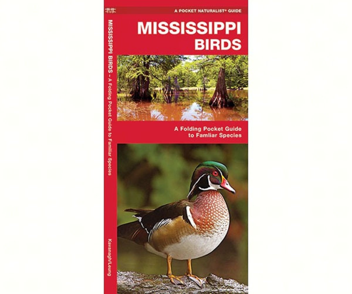 Amazon.com : Waterford Mississippi Birds : Backyard Wild Animal Products :  Garden & Outdoor