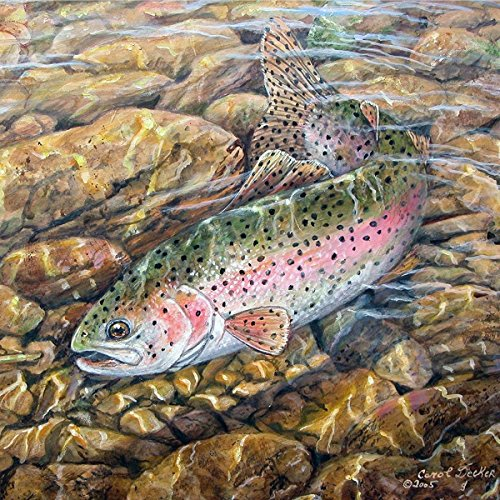 Trout Welcome Sign - 9