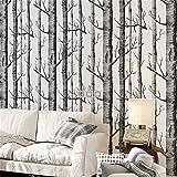 Akea Modern Birch Tree Wallpaper Roll, Black and