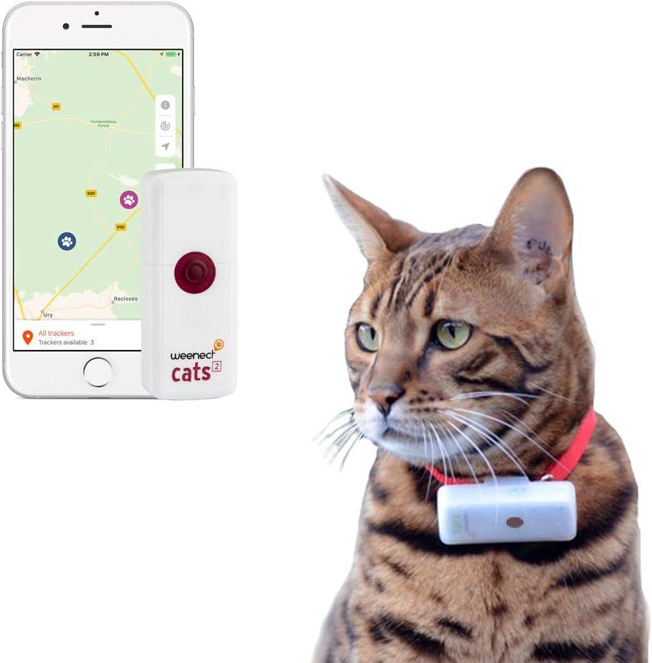 Weenect Cats 2 GPS für Katzen