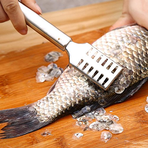 Fish Scaler, Ikevan Stainless Steel Fish Scale Remover Cleaner Scaler Scraper Kitchen Peeler Tool
