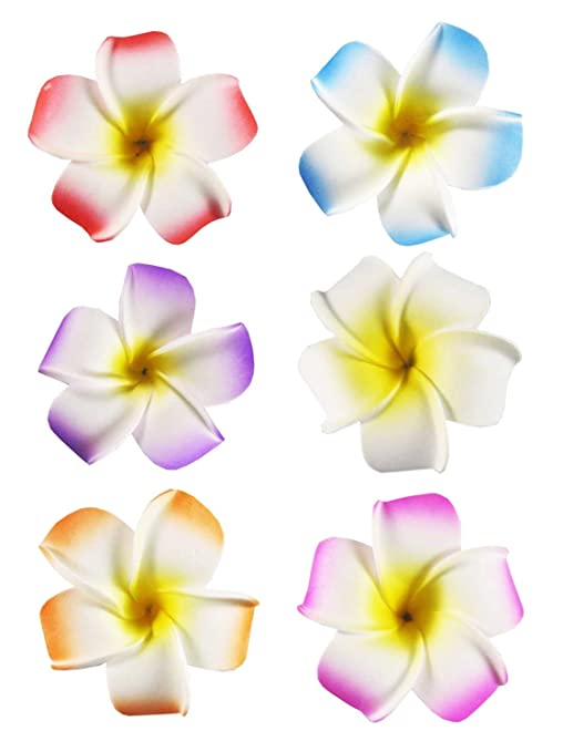 "HipGirl 6pc Set 2.5"" Hawaii Hawaiian Plumeria Flower Foam Hair Clip Accessory, Boutique Alligator Clip Assortment. For Bridal Wedding Party Beach Vacation Outfit, Dress. For Girls Teens Kids Adults"