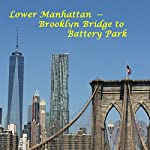 Lower Manhattan: From the Brooklyn Bridge to Battery Park | Maureen Reigh Quinn