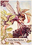 "Wall Calendar 2018 [12 pages 8""x11""] Flower Fairies by Cicely Mary Barker Vintage Books Illustration"