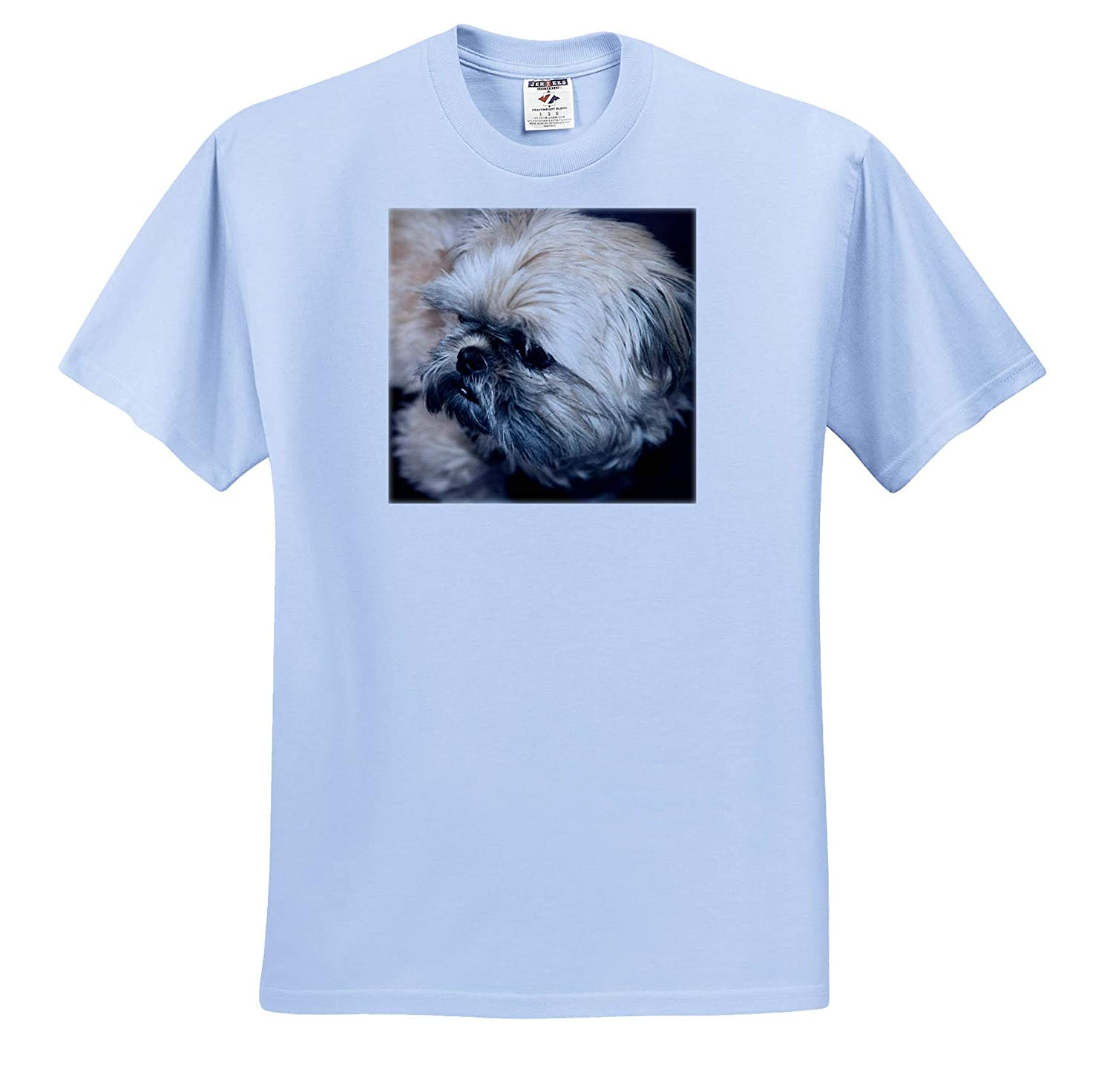 T-Shirts A Sweet Baby Shih Tzu face Shot up Close with Brindle Hair 3dRose Jos Fauxtographee Shih Tzu Baby Face