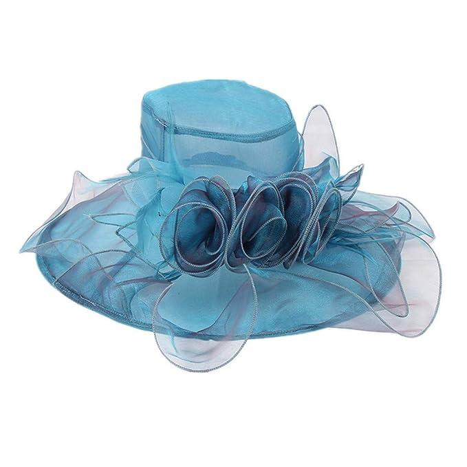 New Women/'s Kentucky Derby Church Wedding Noble Dress hat organza feather hat