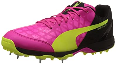 Puma Men s Evospeed Cricket Spike 1.4 Pink Glow bb2a96f71